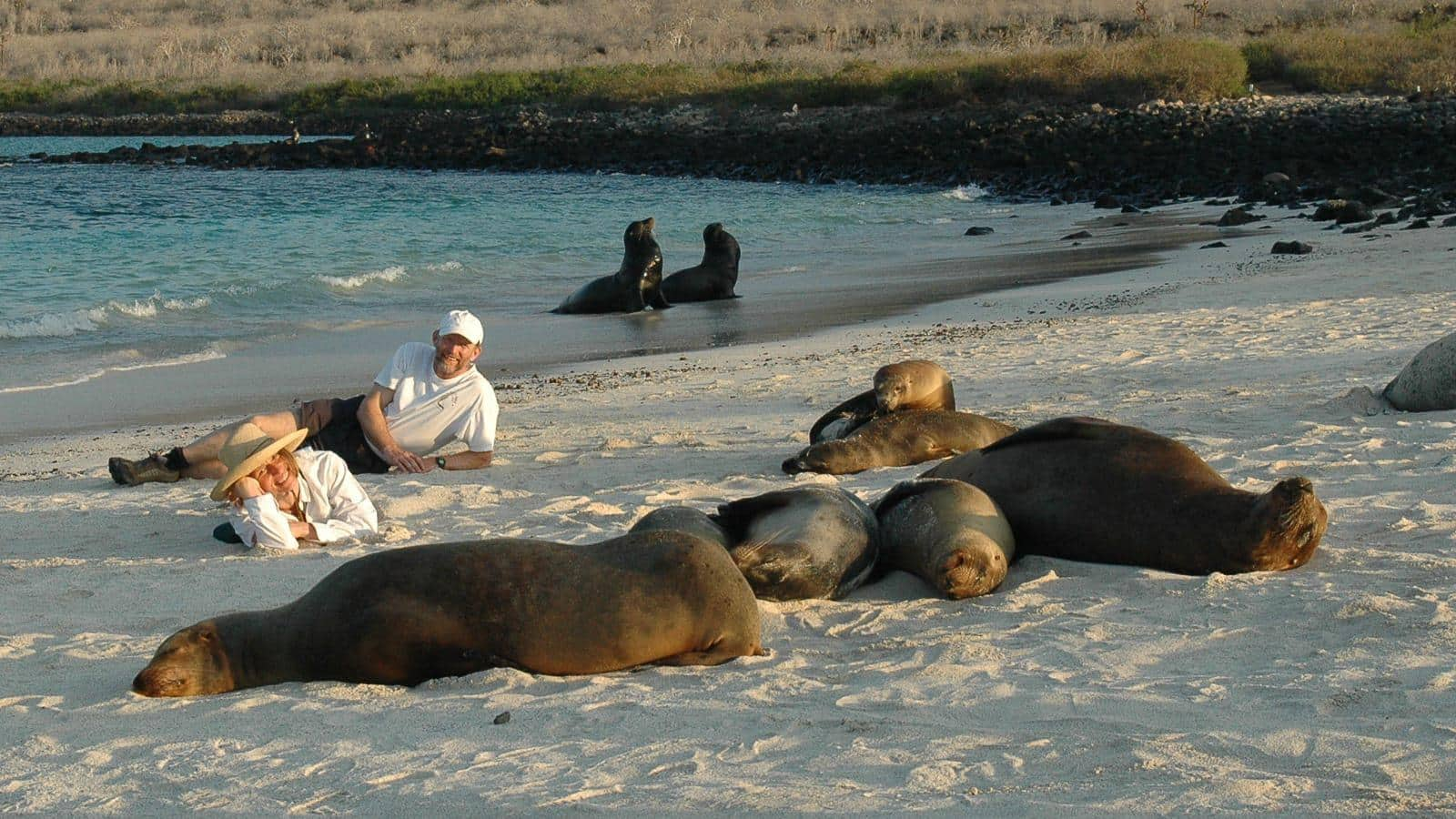 Galapagos Expeditions
