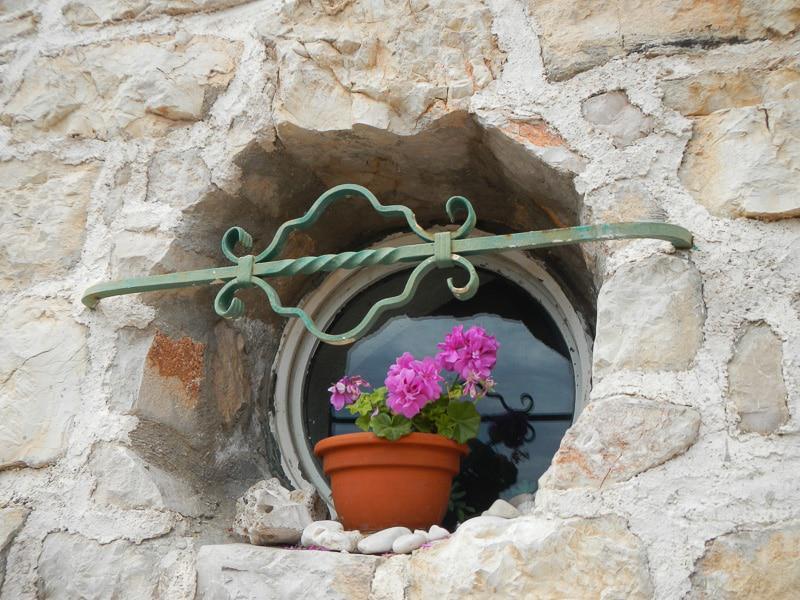 Flower Pot on Window