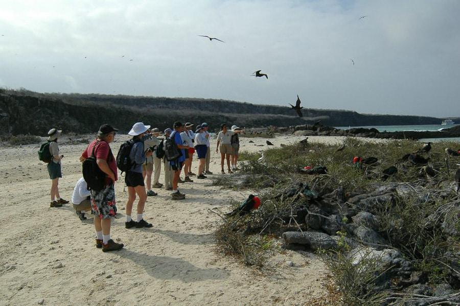 Tourists in Galapagos