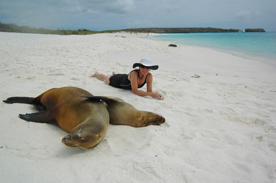 Being Close to Marine Life in Galapagos