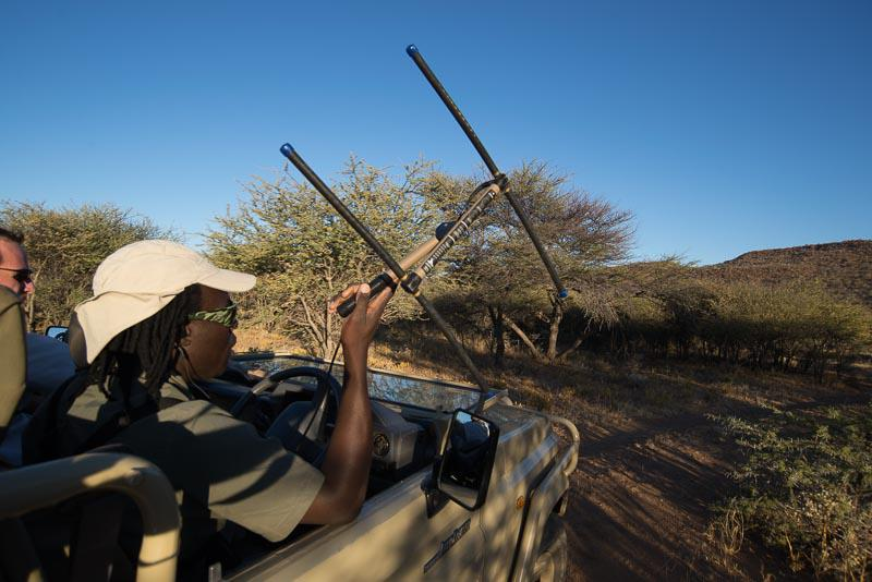 Exciting Adventure Namibia Safari