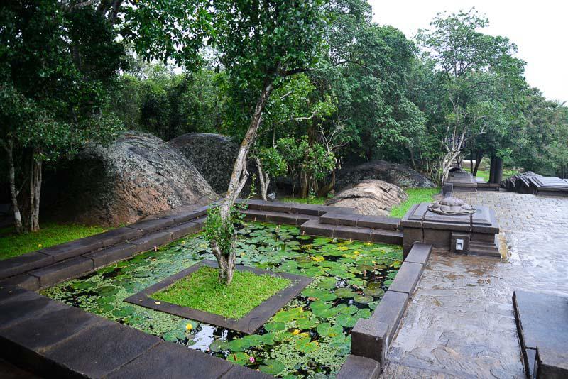 Extraordinary Landscape in Sri Lanka