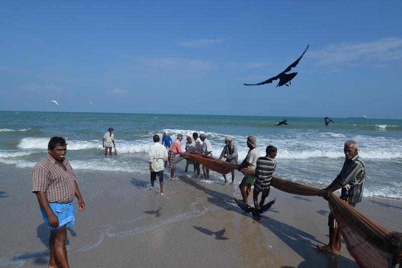 Fishing Activity in Sri Lanka Tour