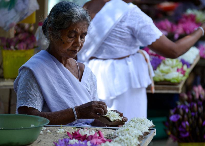 Native Woman of Sri Lanka