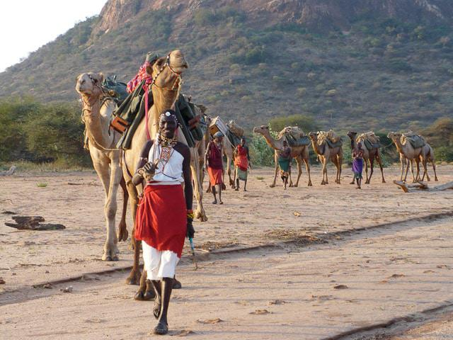 Our Samburu Guides with Camels